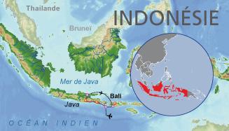 indonesieTEA849M15_preview